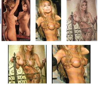 Faye reznick nude playboy photos